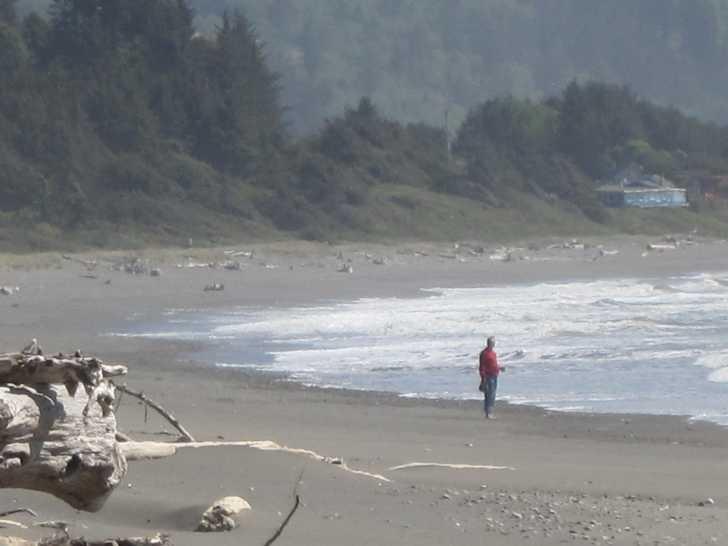 Crisser_walker_in_red_-_beach053638.JPG