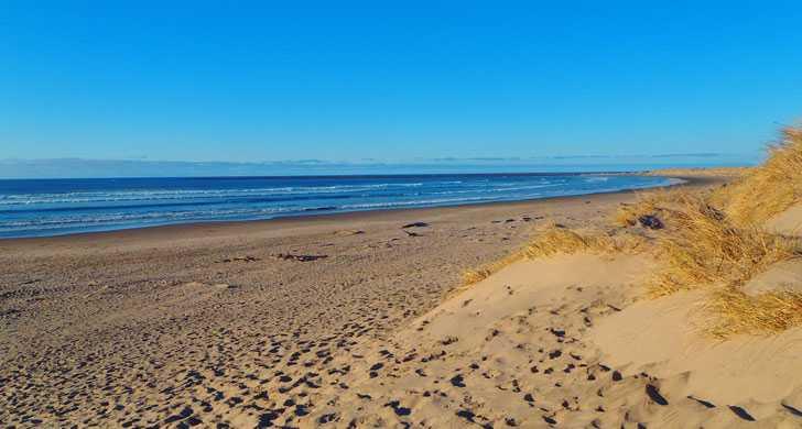 South-Beach-beach013220.jpg