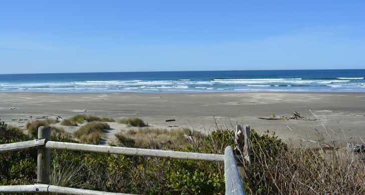 Driftwood-Beach1115908.jpg