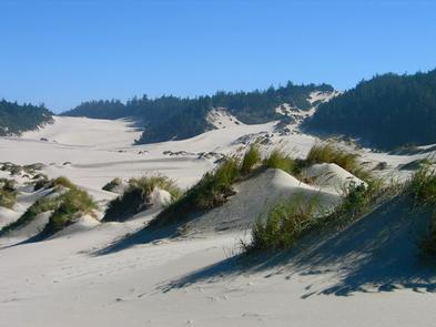 Umpqua Sand Camping