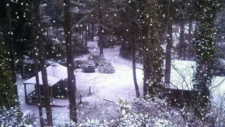 snowy_yurt034009.jpg