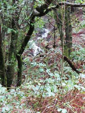 Humbug_-_Hiker_Biker_Winter_waterfall094050.JPG