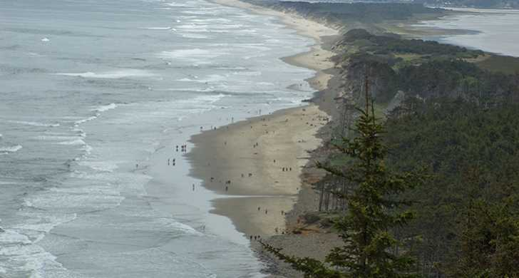 cape_lookout_view.jpg