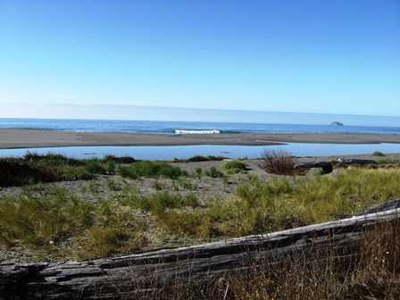 Creek___Beach_View_Arizona_Beach_SRS_1014316.JPG