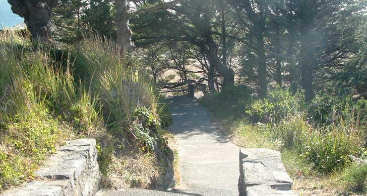 trail to beach.jpg