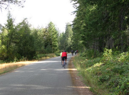 cyclists on gravel path riding away from camera