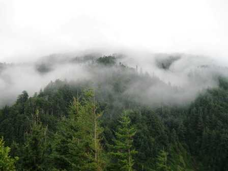 Humbug_Mtn_in_the_Fog_(4)095500.JPG