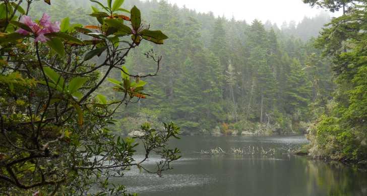 Lake Marie.jpg
