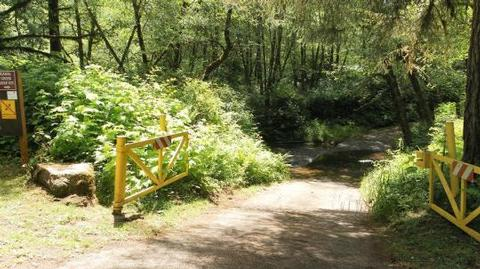 Canal Creek