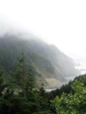 Humbug_Mtn_in_the_Fog_(1)095501.jpg