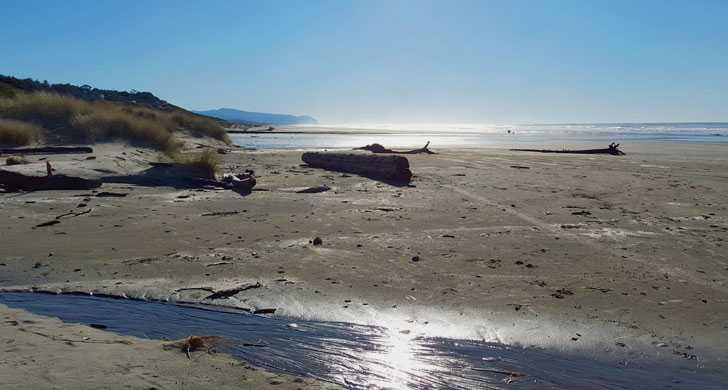 Beach-1092151.jpg