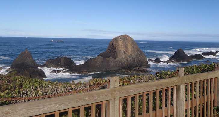 sealrock3013912.jpg