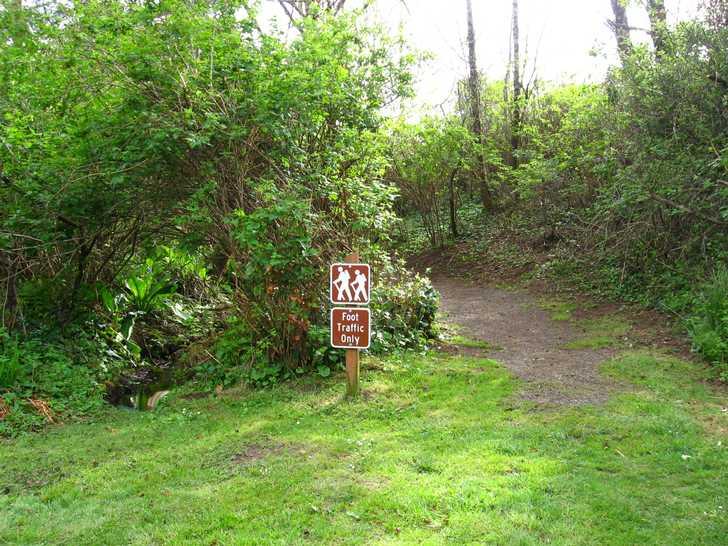Nature_trail114731.JPG