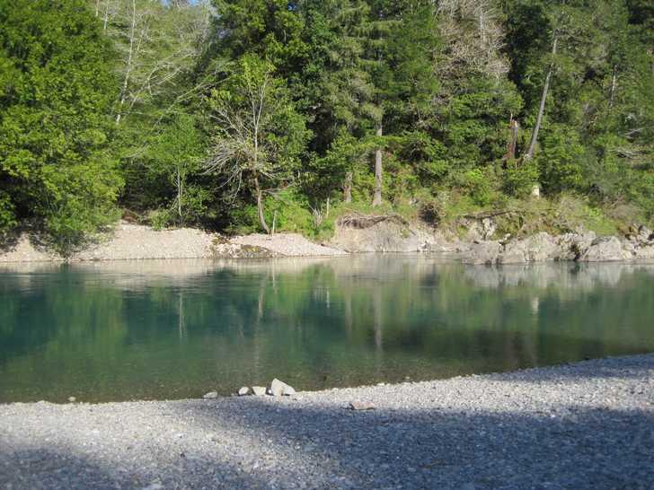 Loeb_river_tree_reflecting045839.JPG