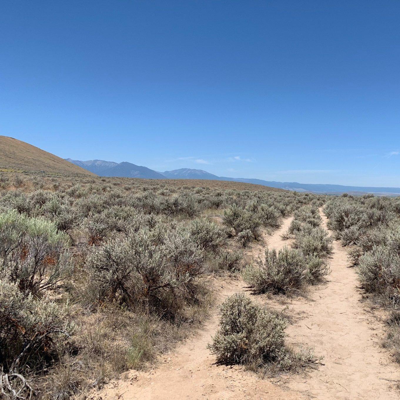 Wagon Ruts, Oregon Trail Interpretive Center