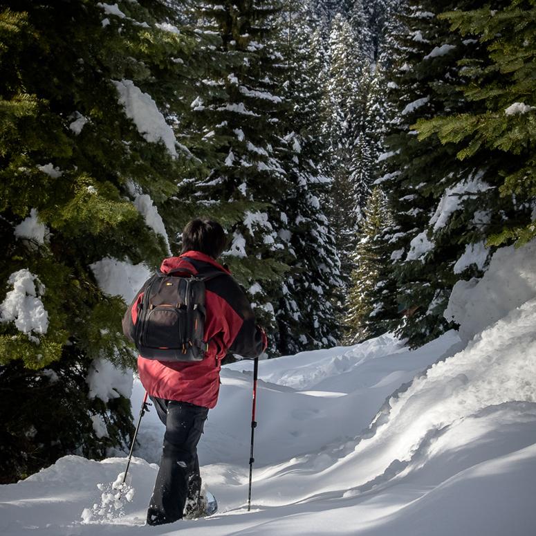 Snowshoeing at Cornucopia Lodge