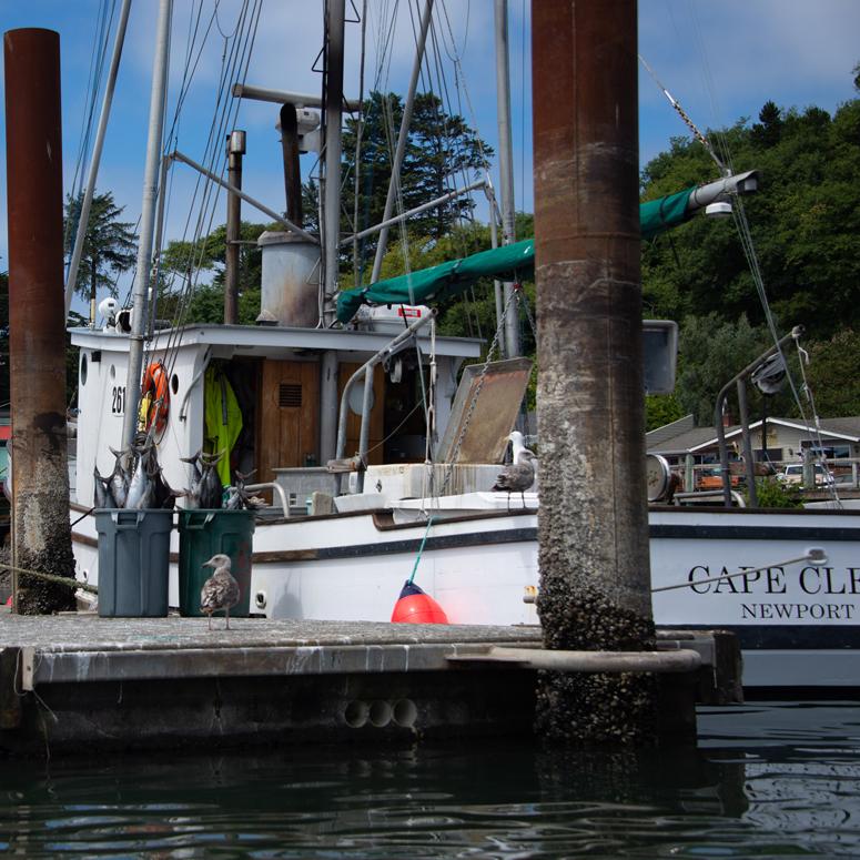 G7-Boating-102.jpg