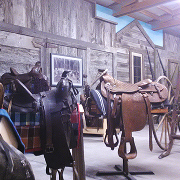 saddles on display at history museum