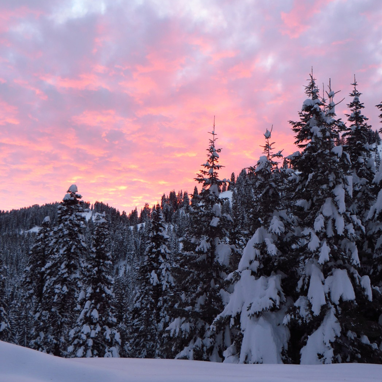 Fresh snow and sunset at Cornucopia Lodge