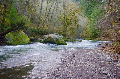 Kilchis River.jpg