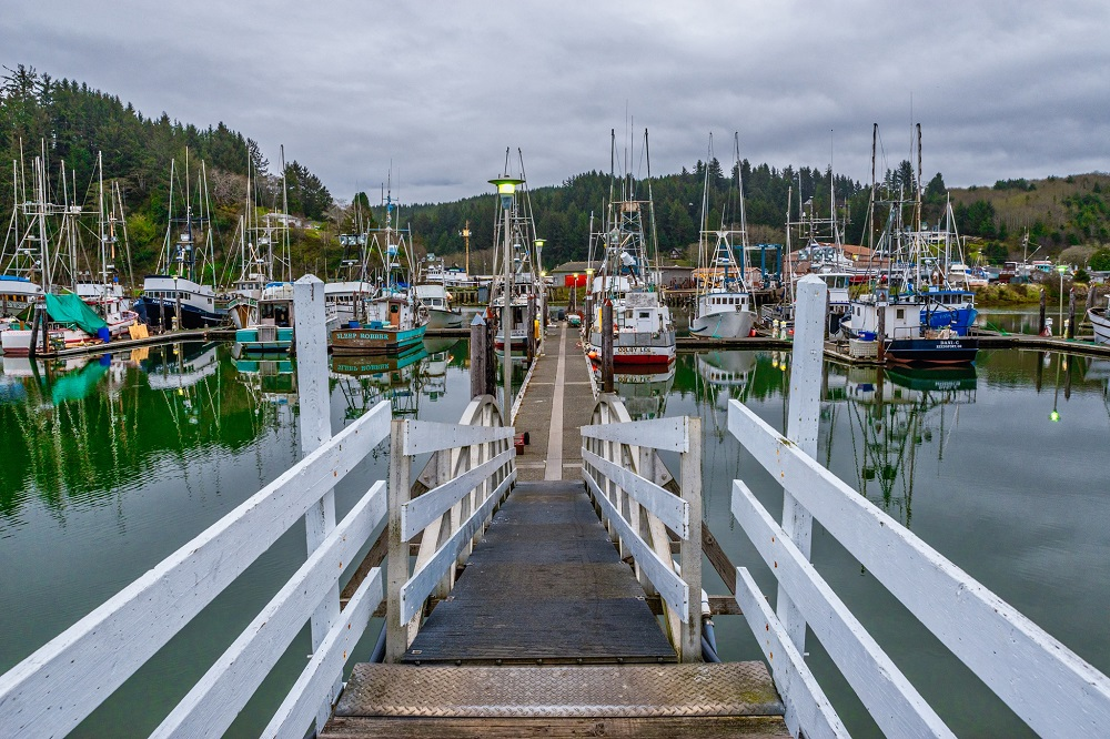 Salmon Harbor Marina.jpg
