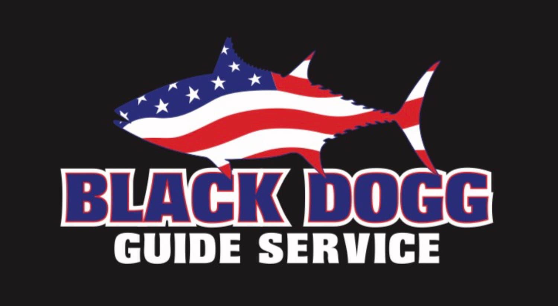 BDGS logo.jpg
