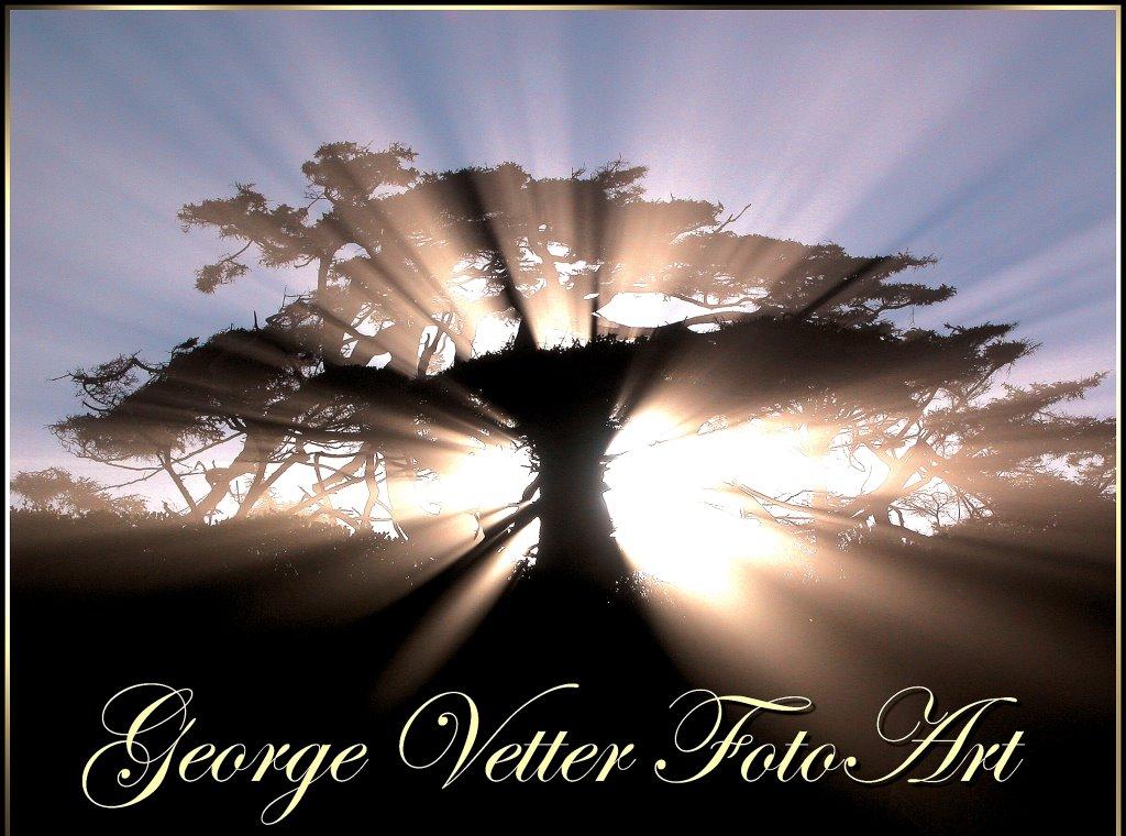George Vetter FotoArt.jpg