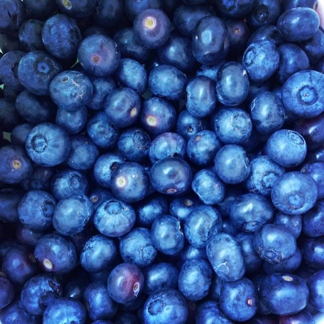Valentine Blueberries.jpg