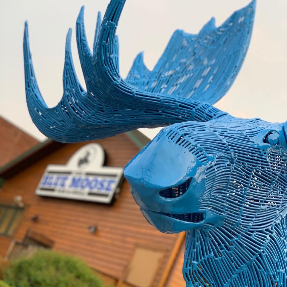 The Blue Moose.jpg