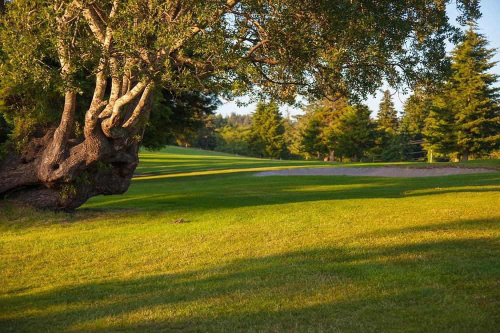 Chinook Winds Resort Golf Course.jpg