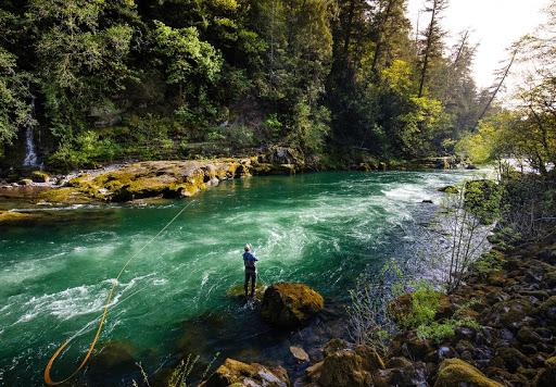Umpqua River.jpg