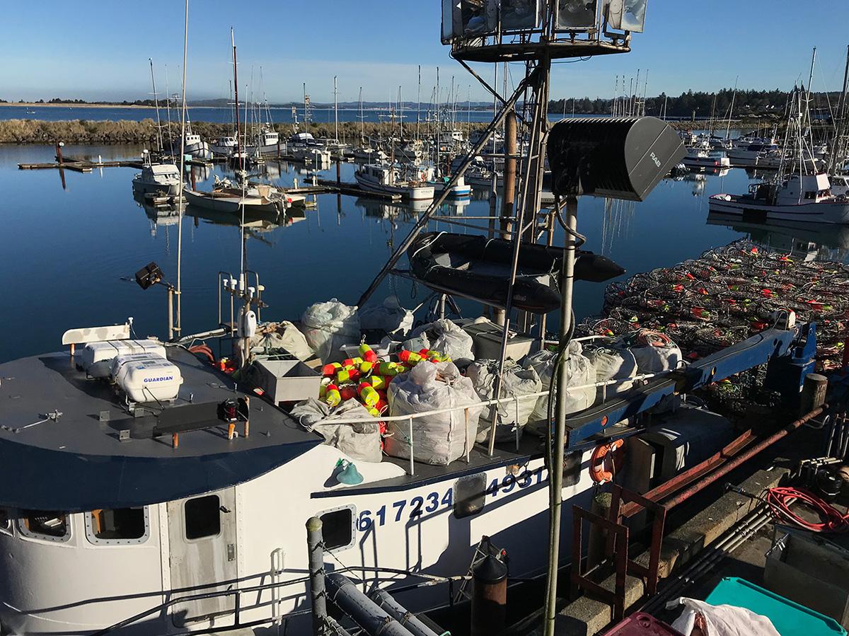 Working-harbor.jpg