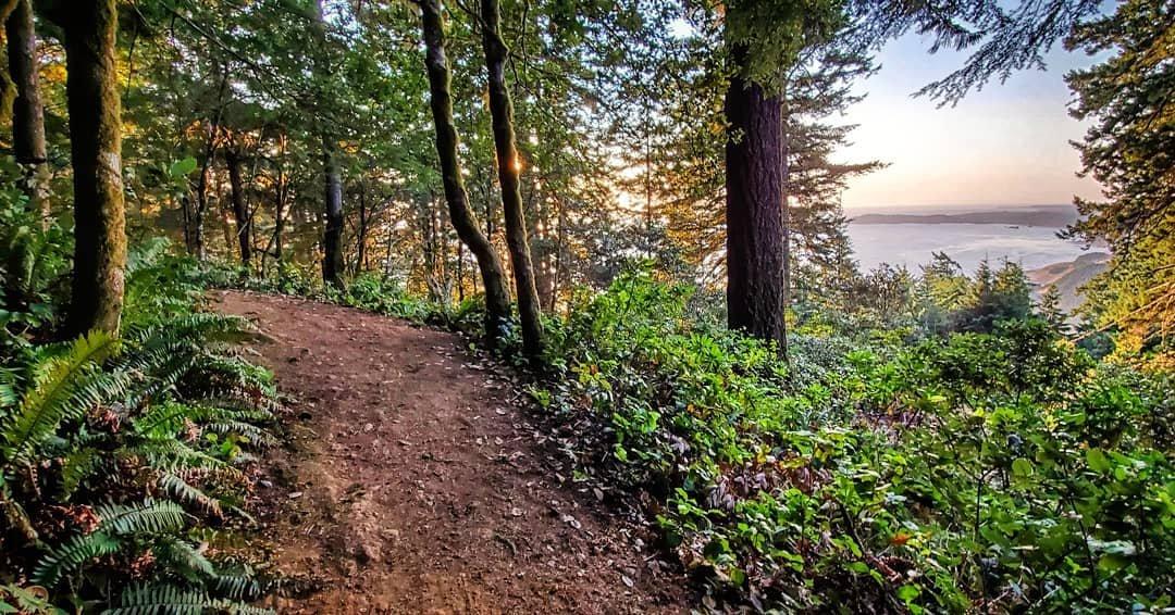 Humbug Mountain State Park.jpg