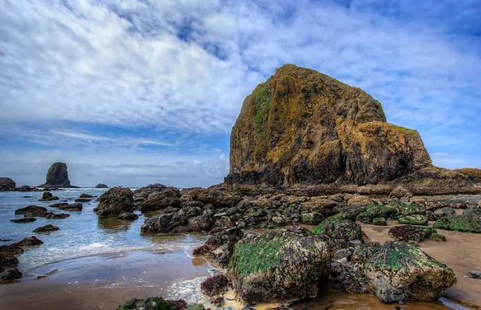 Oregon Coast Visitors Association - Visitor Information Center.jpg