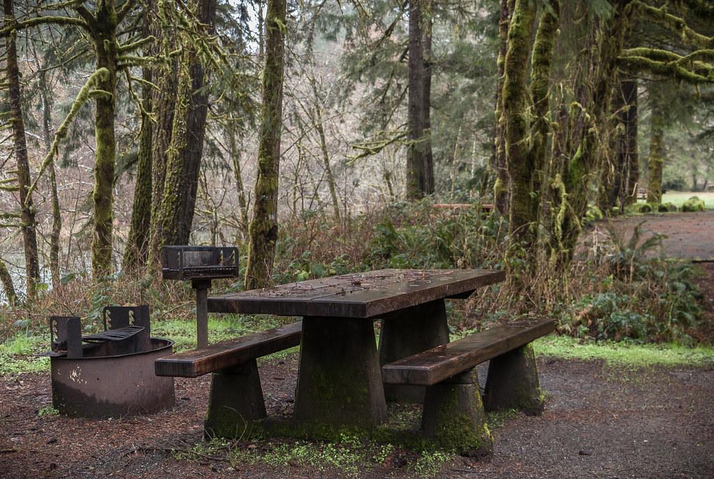 Vincent Creek Recreation Site.jpg
