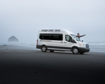 Van at McPhillips Beach