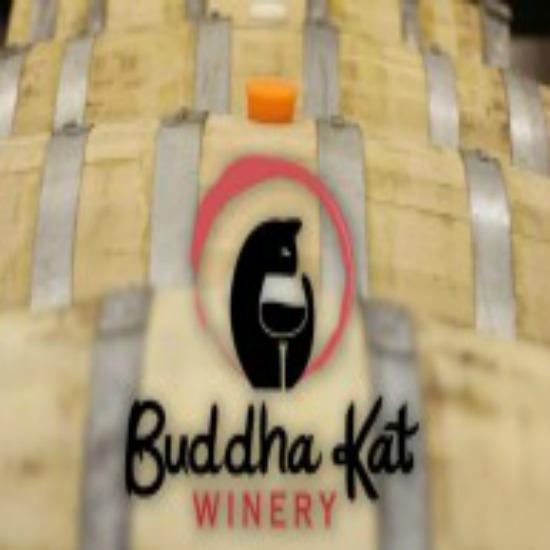 Buddha Kat.jpg