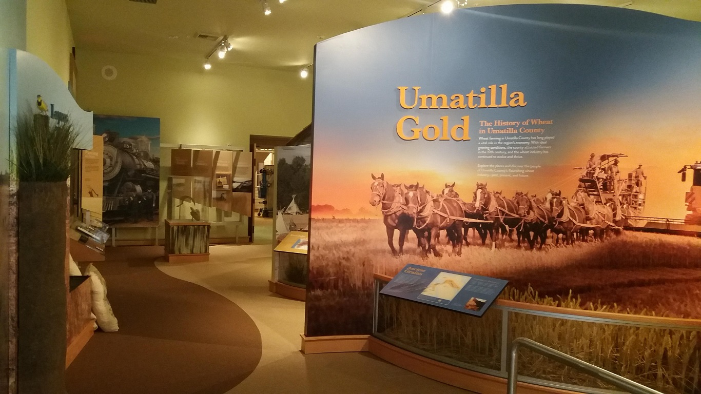 """Newest exhibit """"Umatilla Gold"""" tells the story of wheat, from its early beginnings to how local farmers run their farms today"""