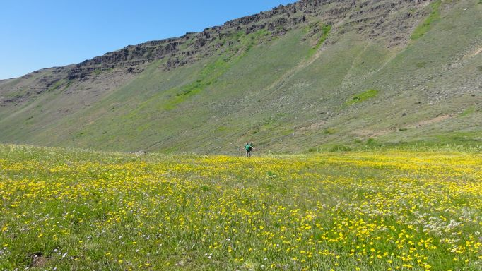 Oregon Desert Trail in Steens Mountain