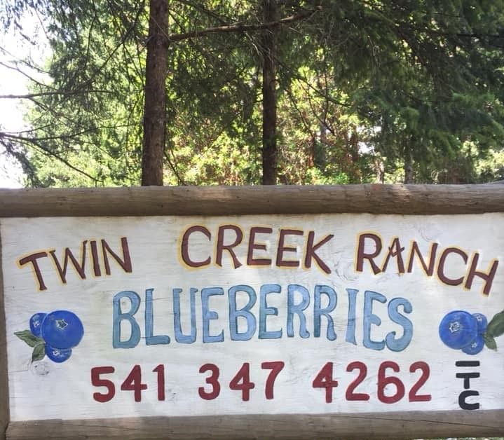 twin creek ranch blueberries_logo (2).jpg