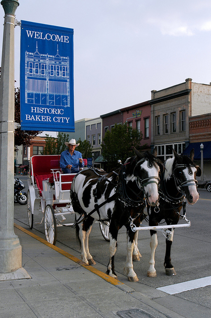 Carriage tours in Downtown Baker City