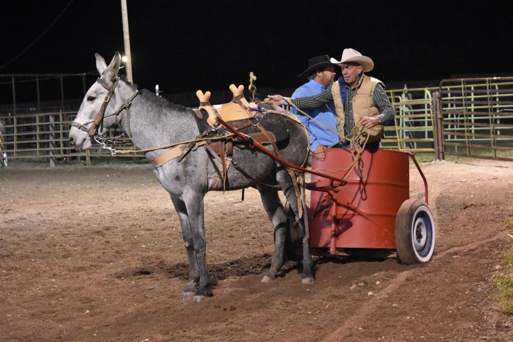 Mule Chariot Roping at the Baker County Fair in Halfway