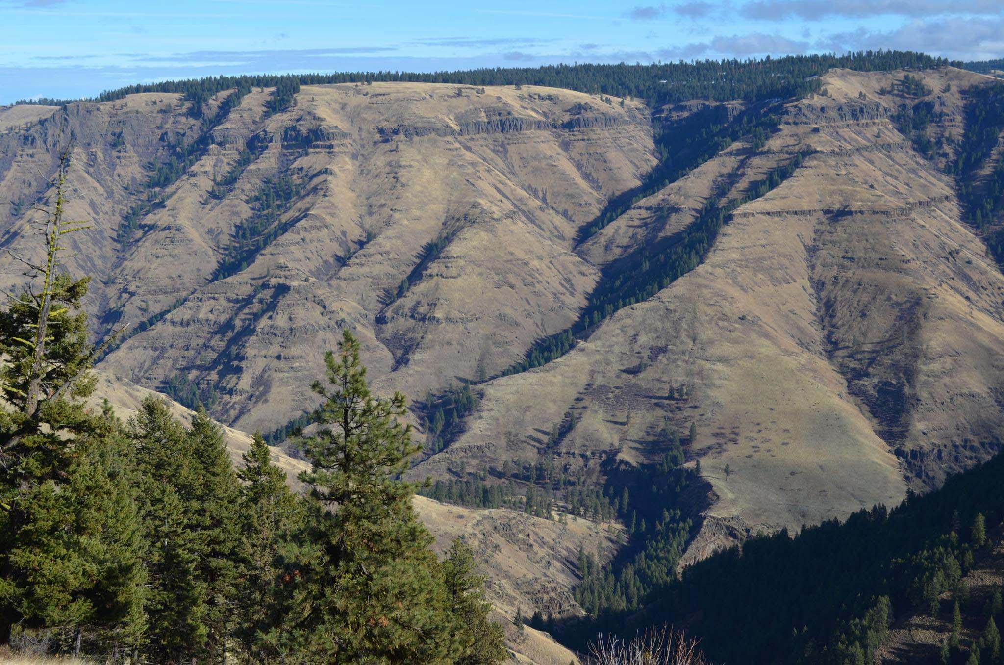 Joseph Canyon Viewpoint